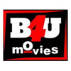 Details of B4U Movies under new TRAI guidelines for DTH operators